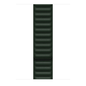 Product Apple 41mm Sequoia Green Leather Link - M/L base image